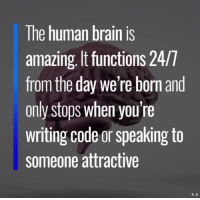 Brain, Amazing, and Human: The human brain is  amazing, It functions 24/T  from the day we're born and  only stops when you're  writing code or speaking to  someone attractive Human brain