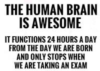 Brain, Amazing, and Awesome: THE HUMAN BRAIN  IS AWESOME  IT FUNCTIONS 24 HOURS A DAY  FROM THE DAY WE ARE BORN  AND ONLY STOPS WHEN  WE ARE TAKING AN EXAM amazing