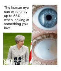 human eyes: The human eye  can expand by  up to 55%  when looking at  something you  love  PO  BBLE