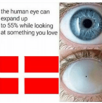 Tips: @kalhenik danskjävlar: the human eye can  expand up  to 55% while looking  at something you love Tips: @kalhenik danskjävlar