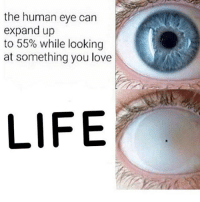 • (Follow @quorn.hub for more funny posts😂👈🏻): the human eye can  expand up  to 55% while looking  at something you love  LIFE • (Follow @quorn.hub for more funny posts😂👈🏻)