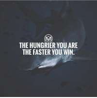 Hungry, Memes, and Word: THE HUNGRIER YOU ARE  THE FASTER YOU WIN If I could describe myself in one word it would be HUNGRY! Hungry to improve myself, hungry to succeed, hungry to inspire and helo others. How hungry are you? DROP a comment below!👇 - hungry success grind millionairementor