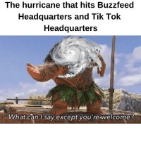 lok: The hurricane that hits Buzzfeed  Headquarters and Tik loK  Headquarters  What can l sav excepot vou re welcome!