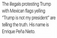 """Enrique Peña Nieto: The illegals protesting Trump  with Mexican flags yelling  Trump is not my president"""" are  telling the truth. His name is  Enrique Pena Nieto"""