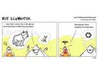 #Evolution is a science. Science is based on facts and evidence and logic. So why do believers not ask for evidence? fear? #Indoctrination?   More at http://www.facebook.com/theilluminatorcomic Check out our website at http://www.theilluminatorcomic.com/  #darwin #chihuahua #wolf #islam #islamophobia #religion #christians #hindu #atheism #newworldorder #nwo #america #illuminati #god #jew #judiasm #Thereisnogod: THE ILLIMINATOR  and that is how the Chihuahua  evolved from a Wolf-like ancestor  www.ThelluminatorComic.conn  AComic by Chris Pinto  Nonsense! God  created Chihuahuas! #Evolution is a science. Science is based on facts and evidence and logic. So why do believers not ask for evidence? fear? #Indoctrination?   More at http://www.facebook.com/theilluminatorcomic Check out our website at http://www.theilluminatorcomic.com/  #darwin #chihuahua #wolf #islam #islamophobia #religion #christians #hindu #atheism #newworldorder #nwo #america #illuminati #god #jew #judiasm #Thereisnogod