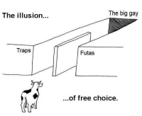 "Free, Gay, and Big: The illusion...  The big gay  Traps  Futas  ...of free choice.  ifi <p>""The Illusion of Free Choice"" Buy Now! via /r/MemeEconomy <a href=""https://ift.tt/2KFPcYc"">https://ift.tt/2KFPcYc</a></p>"
