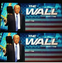 THE  IMA AL  KECU AVE BROEBeER Donald J Trump  Donald J Trump  THE  EOUTME BRODUCER Donald J Trump  HOSTED  Donald J Trump The Wall 😂😂 Donald will be there with his bald eagle and gold plated desert eagle!!! MAGA DonnyT POTUS TheWall DonaldJTrump energizerdonny Go follow my fellow right winger: @45th__commander_in_chief