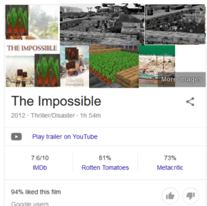 Google, Thriller, and youtube.com: THE IMPOSSIBLE  More images  The Impossible  2012 Thriller/Disaster 1h 54m  Play trailer on YouTube  73%  7.6/10  81%  IMDB  Rotten Tomatoes  Metacritic  94% liked this film  Google users *Sad beetroot noises*