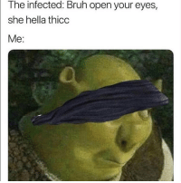 Bruh, Dank Memes, and Open: The infected: Bruh open your eyes,  she hella thicc  Me: Gn