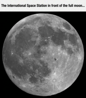 Tumblr, Blog, and Http: The International Space Station in front of the full moon... srsfunny:Fly Me To The Moon