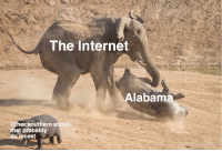 Internet, Alabama, and Http: The Internet  Alabama  Other southern states  that probably  do incest New format idea. Invest if you want.. via /r/MemeEconomy http://bit.ly/2SXBH9H