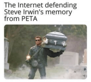 My favorite internet moment of the year.: The Internet defending  Steve Irwin's memory  from PETA My favorite internet moment of the year.
