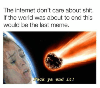 Internet, Meme, and Shit: The internet don't care about shit.  If the world was about to end this  would be the last meme.  Fuck ya end it! Finish Her!