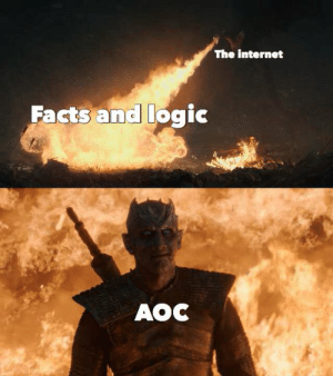 "Facts, Internet, and Logic: The internet  Facts and logic  AOC Another wonderful meme from Shapiro and Daily Wire. It's actually accurate though if you replace ""facts and logic"" with ""right wing smears."""