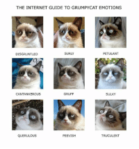 join Grumpy Cat. for more  : ): THE INTERNET GUIDE TO GRUMPYCAT EMOTIONS  SURLY  PETULANT  DISGRUNTLED  CANTANKEROUS  GRUFF  SULKY  PEEVISH  TRUCULENT  QUERULOUS join Grumpy Cat. for more  : )