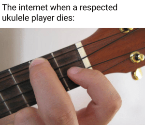 This took two seconds to make: The internet when a respected  ukulele player dies: This took two seconds to make