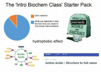 Memes, Michael, and Quizlet: The 'Intro Biochem Class' Starter Pack  new material  HERE LIES  what you learned in intro  bio but now you need to  memorize intermediates  premeds  HOPES  AND  DREAMS  hydrophobic effect  Krebs 2  Quizlet  thu  Amino Acids Structure to full name Credit: Michael Yoon