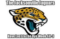 It's really that bad...  Credit:  Jackson Wilashe: The Jacksonmilelaguars  Have lost to the Bye Week 48-3 It's really that bad...  Credit:  Jackson Wilashe