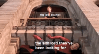 Jedi Council: the jedi council  the sith lord they've  been looking for