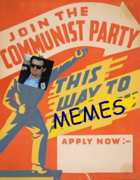 Meme, Memes, and Party: THE  JOIN PARTY  MEMES  APPLY NOW me irl
