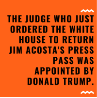 Donald Trump, Memes, and White House: THE JUDGE WHO JUST  ORDERED THE WHITE  HOUSE TO RETURN  JIM ACOSTA'S PRESS  PASS WAS  APPOINTED BY  DONALD TRUMP 😂😂😂