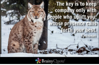 Memes, Best, and 🤖: The key is to keep  company only with  people who uplift you  whose presence call  our best  or  Epictetus  Brainy  Quote The key is to keep company only with people who uplift you, whose presence calls forth your best. - Epictetus