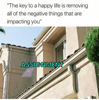 "Life, Happy, and All of The: The key to a happy life is removing  all of the negative things that are  impacting you""  ASSIGNMENT 😂👋"
