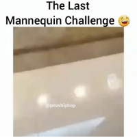 Funny, Girl, and Mannequin: The Last  Mannequin Challenge  apmwhiphop That girl is a what?? 😂😂😂😂