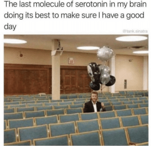 Memes, Best, and Good: The last molecule of serotonin in my brairn  doing its best to make sure I have a good  day  @tank.sinatra https://t.co/DrUpwDDT9N