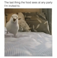 Food, Funny, and Party: The last thing the food sees at any party  I'm invited to 🎯 funniest15 viralcypher funniest15seconds