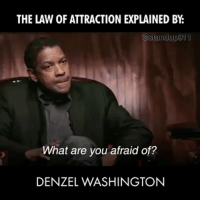 """Denzel Washington, Destiny, and Memes: THE LAW OF ATTRACTION EXPLAINED BY  @standup 911  What are you afraid of?  DENZEL WASHINGTON Some of the most powerful lessons you can ever learn are in these series of videos. Listen to the message(s) and do not let the figures who are speaking get in the way of the message. - """"Watch your thoughts; they become words. Watch your words; they become actions. Watch your actions; they become habit. Watch your habits; they become character. Watch your character; it becomes your destiny. LaoTzu"""" - LawofAttraction manifestation standup911 bethechange"""