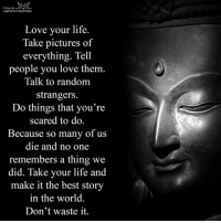 <3: the  LAW of ATTRACTION  Love your life.  Take pictures of  everything. Tell  people you love them.  Talk to random  strangers.  Do things that you're  scared to do.  Because so many of us  die and no one  remembers a thing we  did. Take your life and  make it the best story  in the world  Don't waste it. <3
