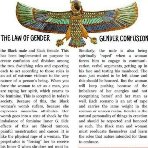 "ankh-niggas-anonymous:  everyone log the fuck off, I found the worst post.-Mod M  @santeria: THE LAW OF GENDER  GENDER CONFUSION  the Black male and Black female. This Similarly, the male is also being  has been mplemented on purpose to spiritually ""raped"" when a woman  create confusion and division among forces him to engage n communi-  the two. Switching roles and expecting cation, verbal arguments, getting up in  each to act according to those roles is his face and testing his manhood. The  an act of extreme violence to the very man just wanted to be left alone and  nature of a person's being. When you this should be honored. But the woman  force the woman to act as a man, you keep pushing because of the  are raping her spirit, which yearns to  be feminine. This is accepted in today's recognizing herself and her man  society. Because of this, the Black Each scenario is an act of rape  woman's womb suffers, because she and carries the same weight in the  expresses masculine attributes. He coss or unseen realm. Gender is the  womb goes into a state of shock by the natural personality of things in creation  imbalance of feminine Inner G. Side and should be respected and honored  effects of this are fibroid tumors, as such. The Black man and woman  painful menstruation and cancer. I is must reeducate themselves and learn  like the physical rape of a woman. The the roles that nature intended for them  perpetrator is forcing"" her to receive embrace  his Inner G when she does not want to  imbalance of her energies and not ankh-niggas-anonymous:  everyone log the fuck off, I found the worst post.-Mod M  @santeria"