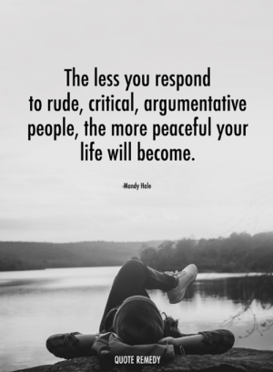 Life, Memes, and Rude: The less you respond  to rude, critical, argumentative  people, the more peaceful your  life will become  Mandy Hale  QUOTE REMEDY
