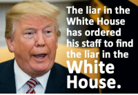 20 Brutally Hilarious Memes Reacting to the Anonymous Op-Ed: http://bit.ly/2M7tMPh: The liar in the  White House  has ordered  his staff to find  the liar in the  White  House. 20 Brutally Hilarious Memes Reacting to the Anonymous Op-Ed: http://bit.ly/2M7tMPh