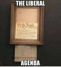 Memes, Nytimes, and Rowdy: THE LIBERAL  AGENDA Thanks to Anthony for this! ~ Ginger  Rowdy Conservatives  https://www.nytimes.com/2018/10/06/arts/design/uk-banksy-painting-sothebys.html