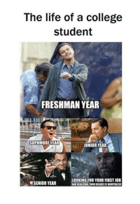 College Student: The life of a college  student  FRESHMAN YEAR  SOPHMORE YEAR  ci JUNIOR YEAR  LOOKING FOR YOUR FIRSTJOB  SENIOR YEAR  ANOREALI2NGYOURDEGREENSWORTHLESS