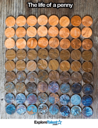 The gradient of money....: The life of a penny  Talent  Explore The gradient of money....