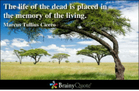 Cicero: The life of the dead is placed in  the memory of the living.  Marcus Tullius Cicero  Brainy  Quote