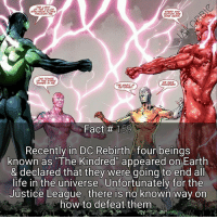 Joker, Memes, and Superman: THE LIGHT  OF THE COLOR  SPECTRUM FLOWS  SPEID AND  THROUGH ME.  MOTION ARE  MONEY AGAIN.  POWER  THE HE HAVE  SHINES IN ME.  AWARENED.  THE MASAC  RETURNED  Fact #s159  Recently in DC Rebirth four beings  known as The Kindred appeared on Earth  & declared that they Were going to end all  life in the universe Unfortunately for the  Justice League, there is no known way on  how to defeat them What's your favorite DC Rebirth series right now ?☄ DC Comics Kindred Batman Superman WonderWoman TheFlash Aquaman GreenLantern JusticeLeague DrManhattan Watchmen Rorschach DickGrayson Deathstroke Joker KidFlash Titans DonnaTroy Aqualad YoungJustice Superboy MissMartian MartianManhunter DCEU DCRebirth DCComics
