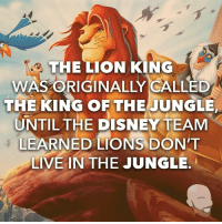 king: THE LION KING  WAS ORIGINALLY CALLED  THE KING OF THE JUNGLE  UNTIL THE DISNEY TEAM  LEARNED LIONS DON'T  LIVE IN THE JUNGLE