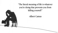 """The literal meaning of life is..."" -Albert Camus [1920x1080]: ""The literal meaning of life is whatever  you're doing that prevents you from  killing yourself""  -Albert Camus ""The literal meaning of life is..."" -Albert Camus [1920x1080]"