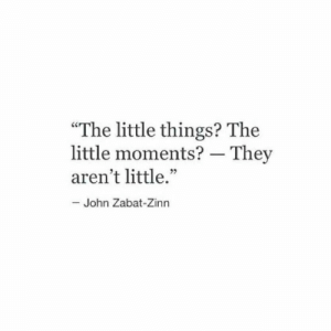 "They, Little John, and  Things: ""The little things? The  little moments? - They  aren't little.""  John Zabat-Zinn"
