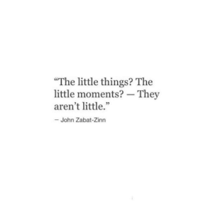 "They,  Things, and  Little Things: ""The little things? The  little moments? - They  aren't little.""  35  John Zabat-Zinn"
