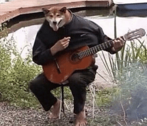 The local Chernobyl mutant plays tunes: The local Chernobyl mutant plays tunes