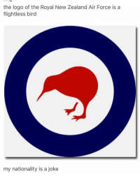 Ironic, Kim Possible, and Air Force: the logo of the Royal New Zealand Air Force is a  flightless bird  my nationality is a joke disney channel is so good today all old shows i used to watch are on!!! like kim possible and lilo and stitch and all them
