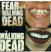 Animals, Family, and Funny Animals: THE Lol, how accurate is this!! What do you prefer twd or fear 💯💯💯💯 fearthewalkingdead thewalkingdead loveyourself promoter funny animals kitty horrortalk thewalkingdeadfamily bates makeup fx memes photo family Instagram selfie HORRORVIXEN101