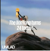 Dank, Lion, and Lion King: The lonking turns  24 today  UNILAD Lion King turns 24 years old today... Aaand now I feel old 😅🦁
