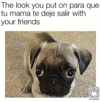 Memes, 🤖, and Looking: The look you put on para que  tu mama te dee salir with  your friends  SC: BLSNAPZ Por favorrrr! 😂 @beinglatino 😂 Beinglatino BeLatino LatinosBeLike LatinasBeLike hispanicsBeLike LatinoProblems HispanicProblems GrowingUpHispanic GrowingUpLatino GrowingUpMexican MexicansBeLike TheStruggle FunnyAF FunnyMeme