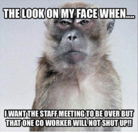 Dank, Mondays, and Happy: THE LOOKONIMY FACE WHEN  To  IWANTTHE STAFF MEETING TO BE OVER BUT  THAT ONE COWORKER WILL NOTISHUTUP!! Happy Monday Everyone!